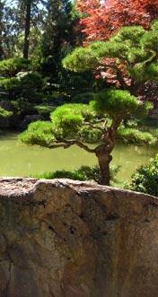 Progettazione e realizzazione di giardini la quercia brescia for Architettura verde